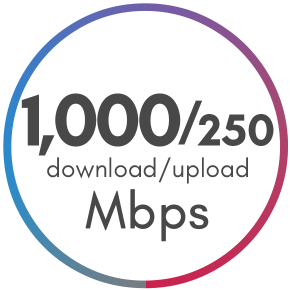 1000 Mbps Package