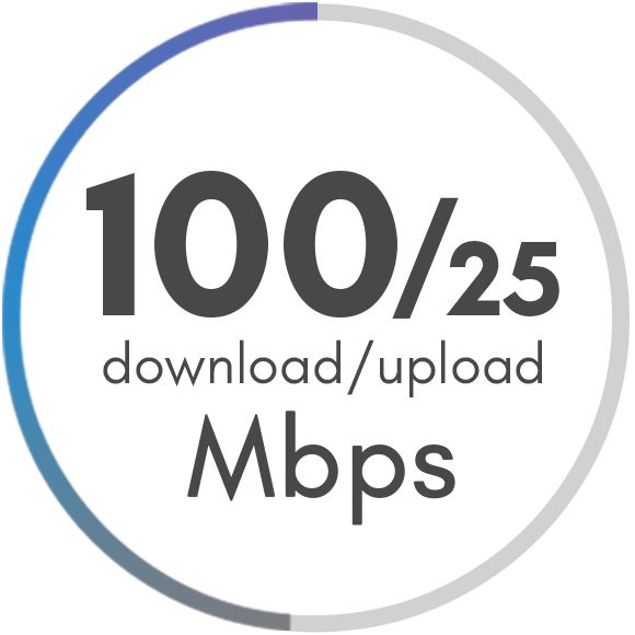 100 Mbps Package