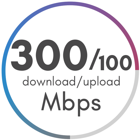 300 Mbps Package